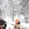雪山で歌ってたらオオカミ達もハモってきた!