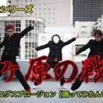「関ヶ原の戦い」踊る授業シリーズ