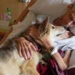【涙腺崩壊】「最後にもう一度だけ、愛犬に会いたい」死期が迫る男性の切なる願いが叶えられる時